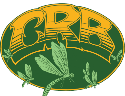 Chris Robinson Brotherhood Shows September 6th – 19th