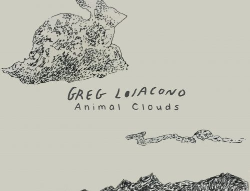 New Song – Animal Clouds